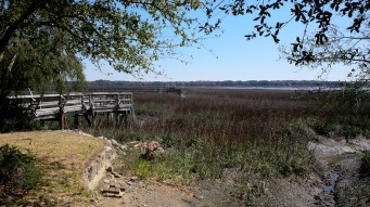 View of the marsh from a dead end street in Beaufort, SC.
